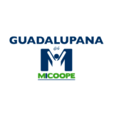 Guadalupana es Micoope Metronorte